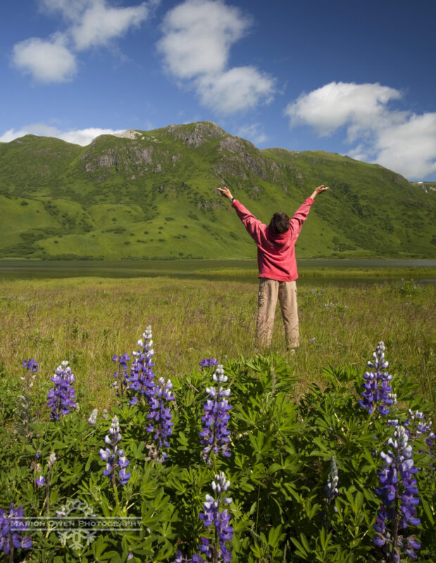happy, Kodiak, Island, Alaska, lupine, wildflowers, blue sky, sun, sunshine, woman, flowers, summer