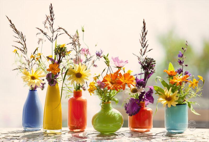 vases, flowers, sage, grasses, glass, beauty, photograph, still life