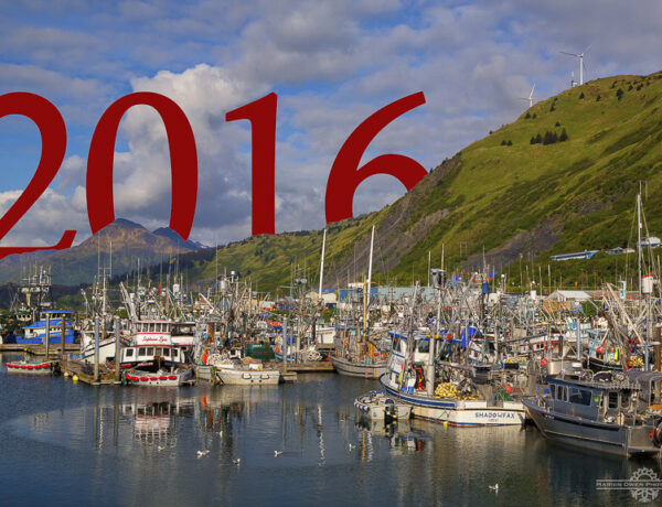 Kodiak, Alaska, harbor, boats, fishing, commercial, New Year, Marion, Owen, photography
