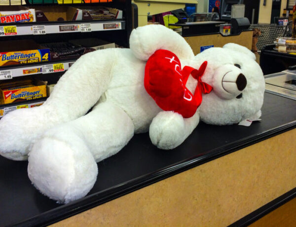 Valentine's Day, stuffed bear, commercial, holiday