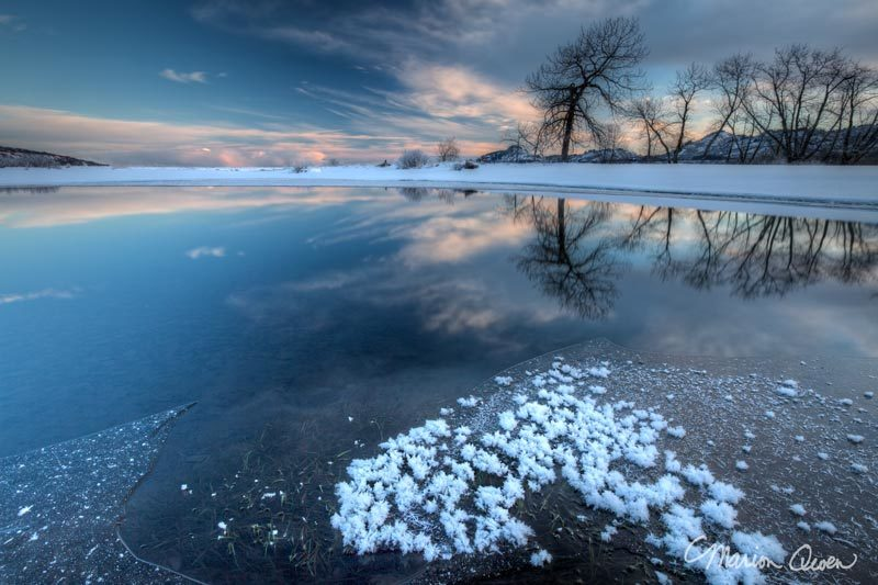 winter, scene, landscape, snow, frost, trees, sunrise