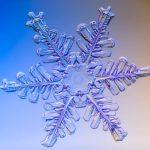 snowflake, real, snow crystal, nitrogen, fertilizer, organic gardening tips, Kodiak, Alaska