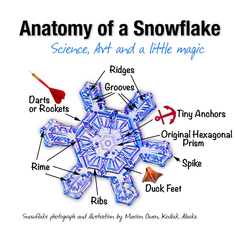 snowflake facts, Alaska nature photography