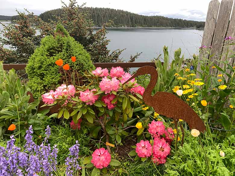 summer garden in Kodiak, Alaska
